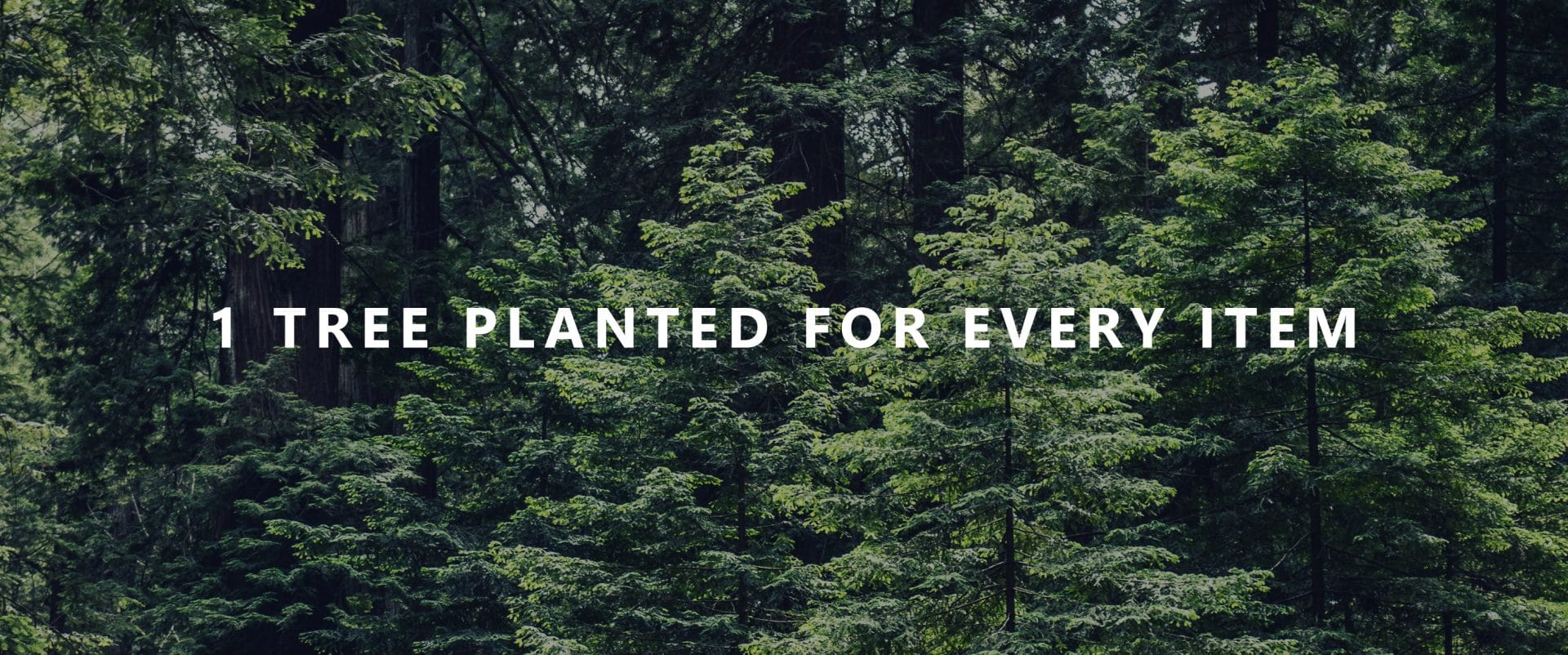 1 tree planted for every item