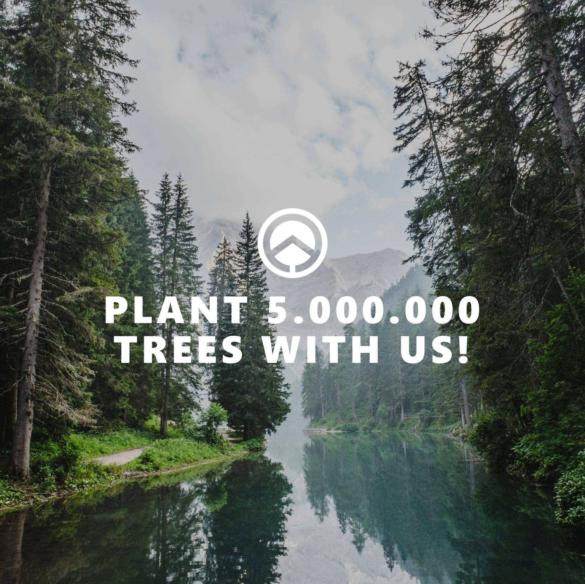 Plant 5000000 trees with us_gsm