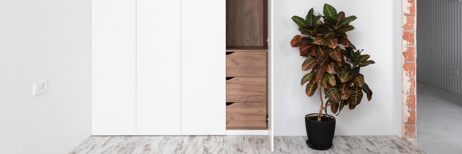 What's the importance of a great planter?